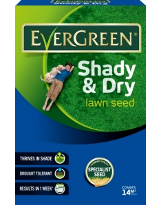 EverGreen Shady & Dry Lawn Grass Seed 420g Carton