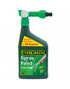 Miracle-Gro Evergreen Fast Green 1L Spray & Feed