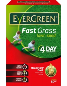 EverGreen Fast Grass Lawn Seed 80m2