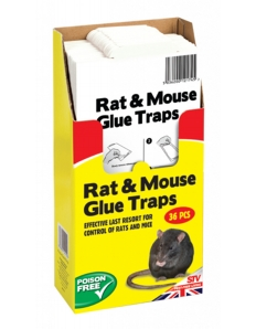 The Big Cheese Rat  & Mouse Glue Trap