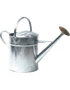 Ambassador Galvanised Watering Can 2 Gallon
