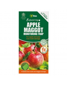 Vitax Apple Maggot Trap