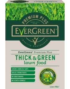 Miracle-Gro Evergreen Premium Plus Thick & Green 100m2