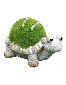 Kent Collection Flocked Turtle L