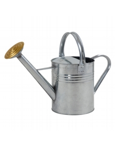 Ambassador Galvanised Watering Can 1 Gallon