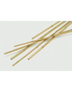 Apollo Bamboo Canes Pack 10 1.2m